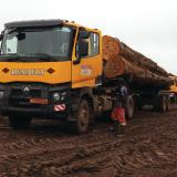 Logging Renault Trucks in Cameroon